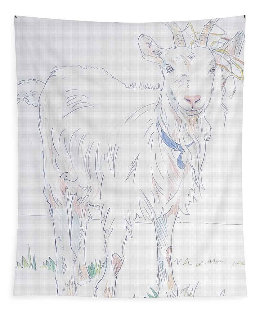 Goats Tapestry featuring the drawing Goat Drawing by Mike Jory
