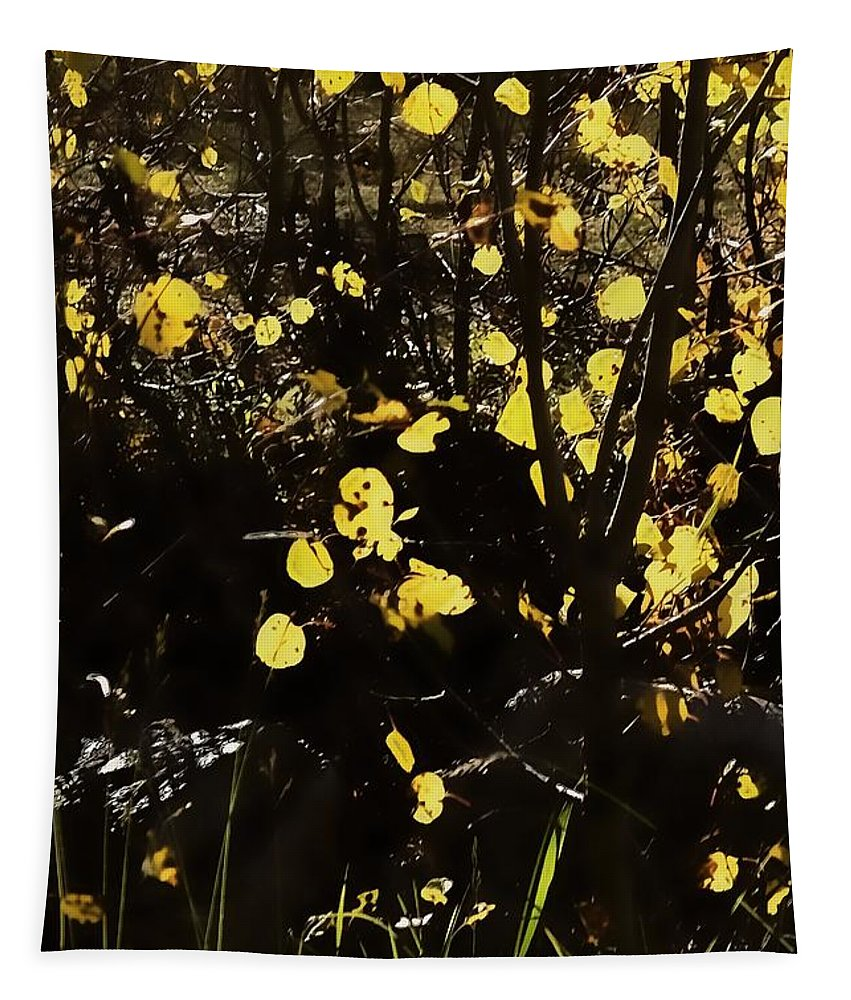 Digital Color Photo Tapestry featuring the digital art Gold Coin Aspen by Tim Richards