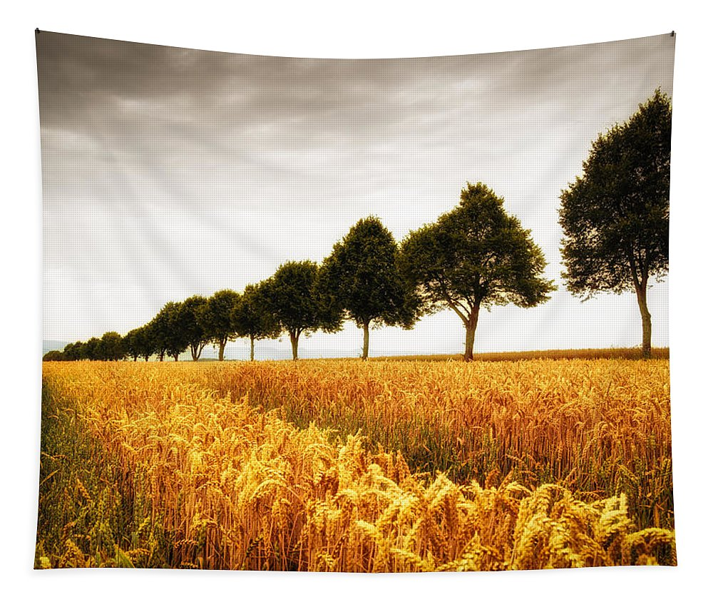 Trees Tapestry featuring the photograph Golden Cornfield And Row Of Trees by Matthias Hauser