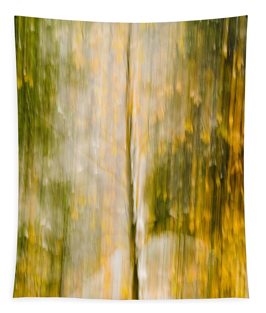 Trees Tapestry featuring the photograph Golden Falls by Bill Gallagher