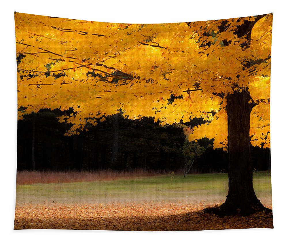 autumn Foliage New England Tapestry featuring the photograph Golden Glow Of Autumn Fall Colors by Jeff Folger