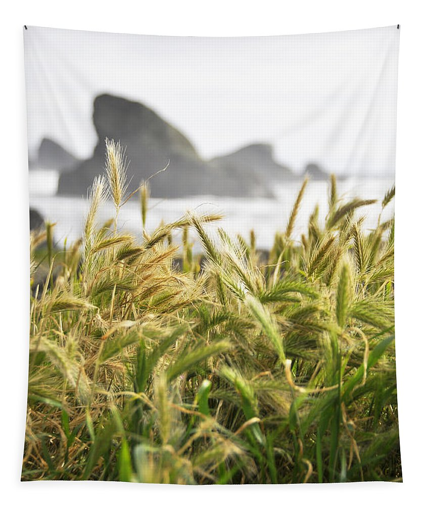 Wendyelliottphotography Tapestry featuring the photograph Golden Grains by Wendy Elliott
