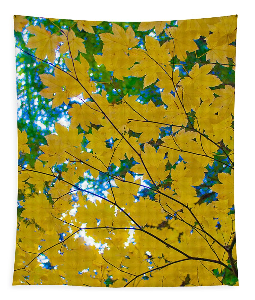 Golden Leaves Of Autumn Tapestry featuring the photograph Golden Leaves Of Autumn by Tikvah's Hope