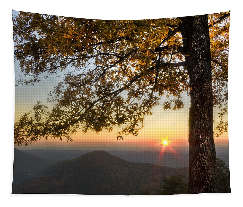 Appalachia Tapestry featuring the photograph Golden Lights by Debra and Dave Vanderlaan