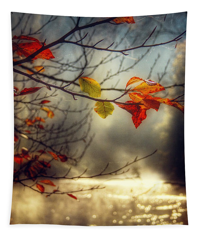 Leaves Tapestry featuring the photograph Golden River by Dirk Wuestenhagen