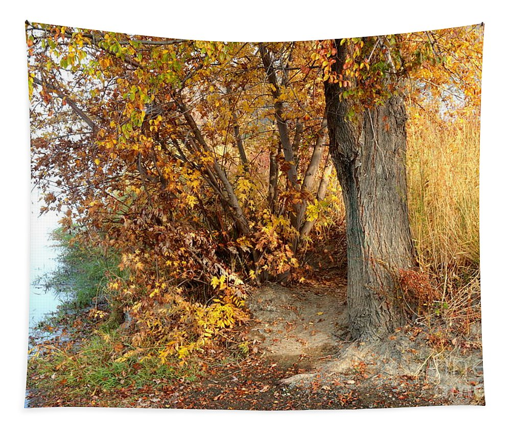 Autumn Tapestry featuring the photograph Golden Riverbank by Carol Groenen
