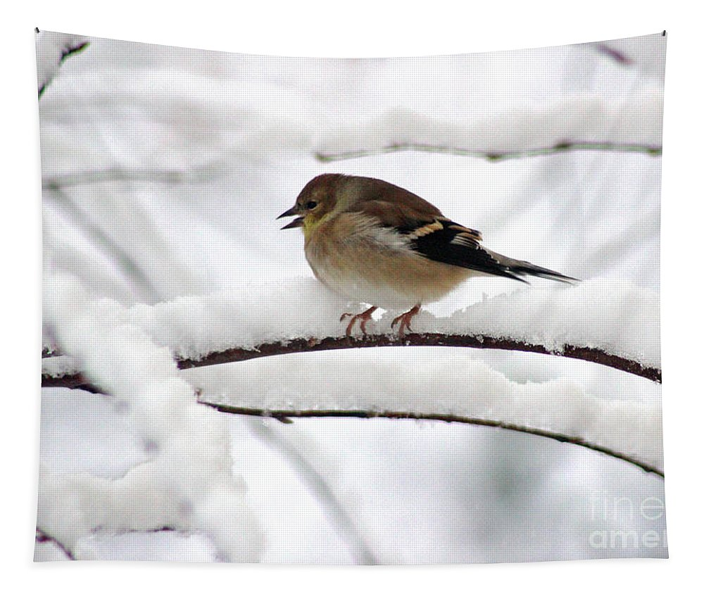 Branch Tapestry featuring the photograph Goldfinch On Snowy Branches by Karen Adams