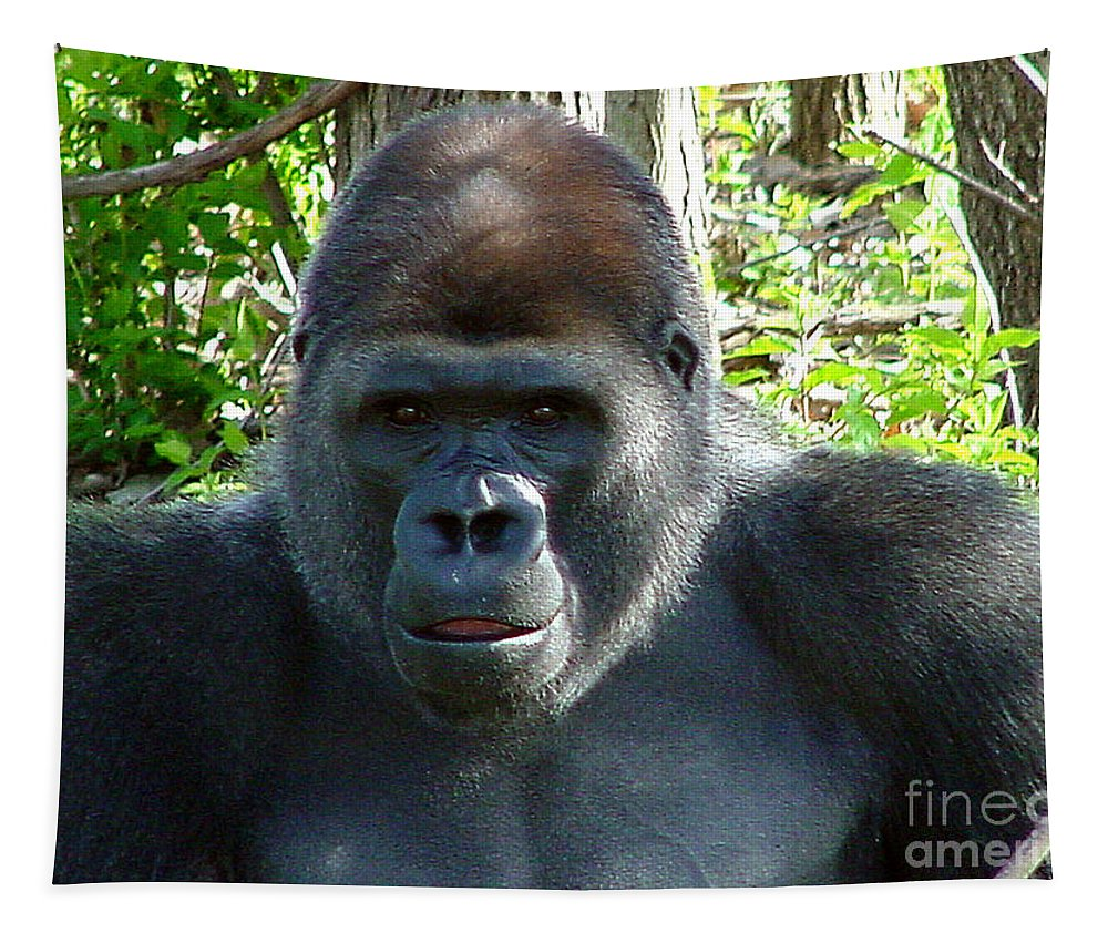 Gorilla Tapestry featuring the photograph Gorilla Headshot by Gary Gingrich Galleries