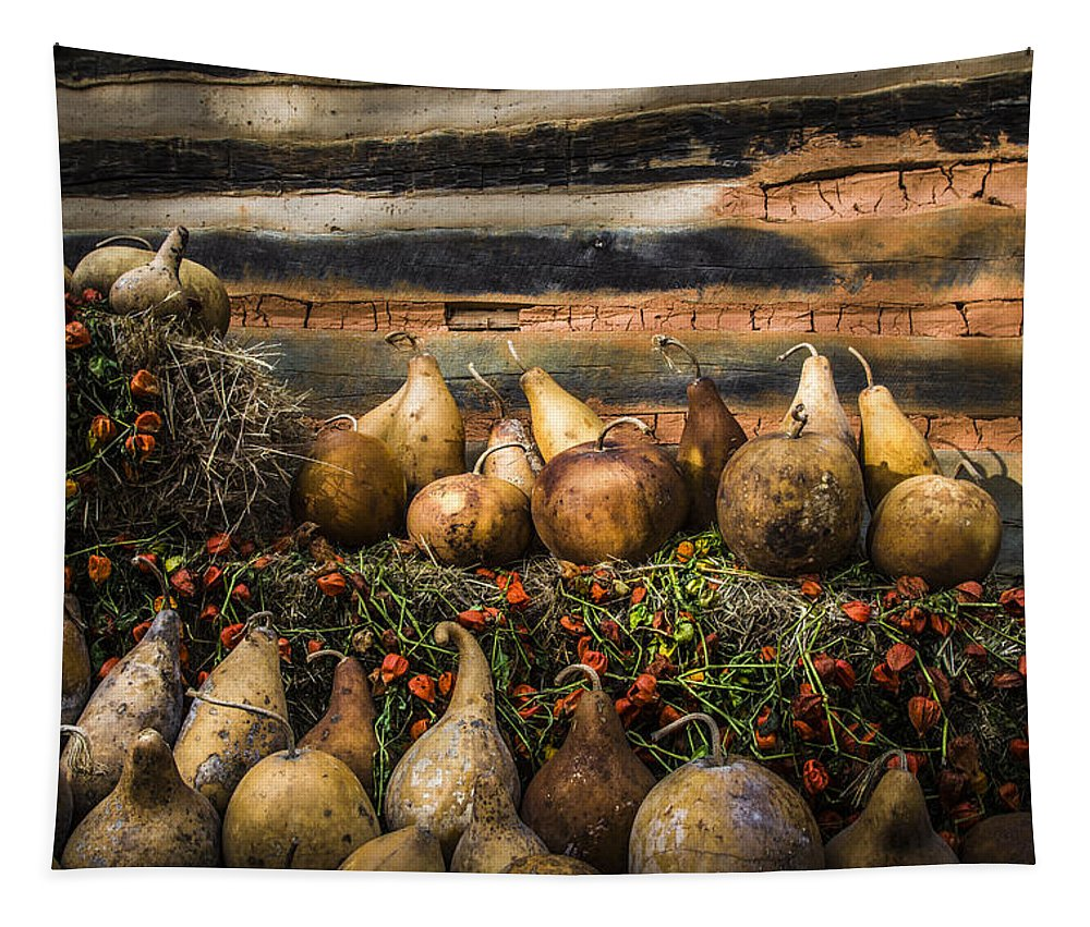 Appalachia Tapestry featuring the photograph Gourds by Debra and Dave Vanderlaan