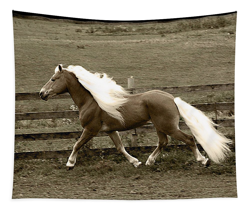Stallion Tapestry featuring the photograph Graceful by Annette Persinger