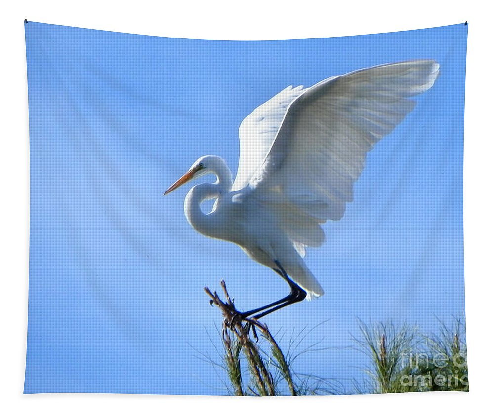 Heron Tapestry featuring the photograph Graceful Landing by Deb Halloran