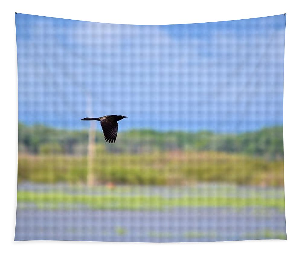 Grackle Tapestry featuring the photograph Grackle In Flight by Bonfire Photography