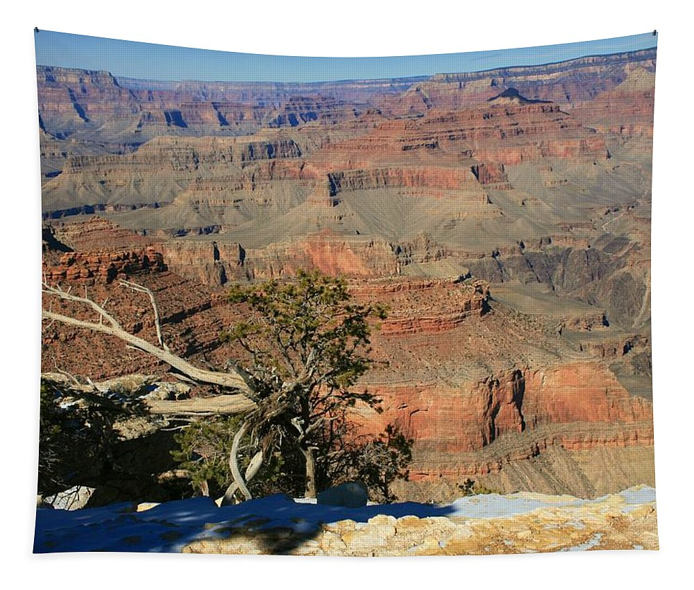 Grand Canyon Tapestry featuring the photograph Grand Canyon 2 by Susan McMenamin