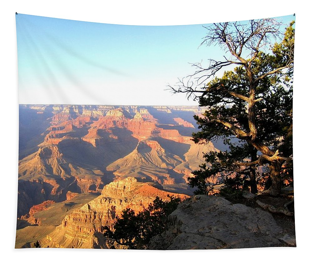 Grand Canyon Tapestry featuring the photograph Grand Canyon 63 by Will Borden