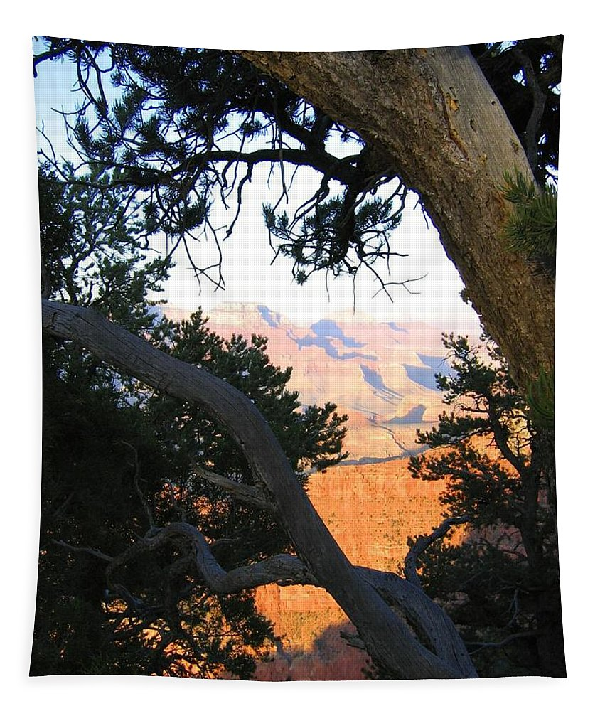 Grand Canyon 74 Tapestry featuring the photograph Grand Canyon 74 by Will Borden