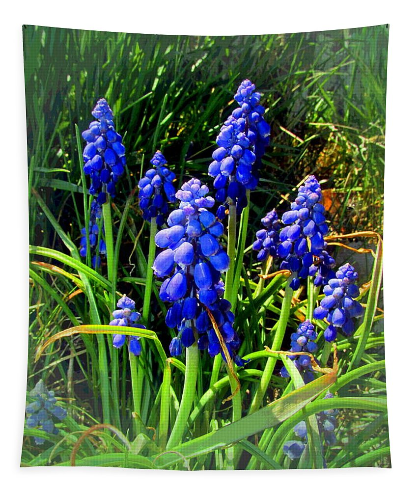 Grape-hyacinth Tapestry featuring the photograph Grape Hyacinths 2014 by Joyce Dickens