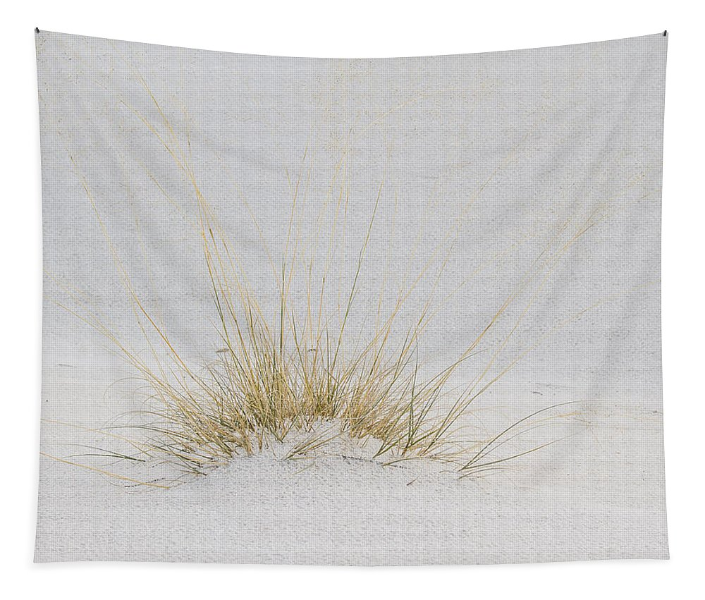 White Sands Tapestry featuring the photograph Grass Covered By White Sand by Jean Noren