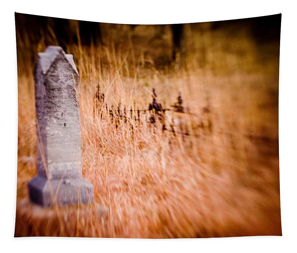 Color Tapestry featuring the photograph Graveyard 6792 by Timothy Bischoff