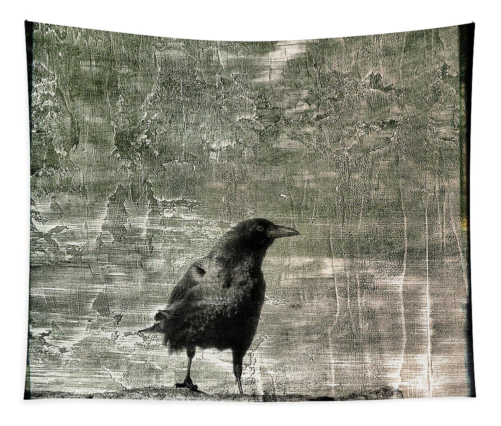 Gray Tapestry featuring the photograph Abstract Gray by Gothicrow Images