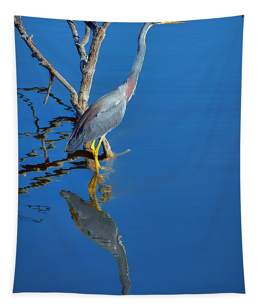 Herons Tapestry featuring the photograph Tricolored Heron by Nikolyn McDonald