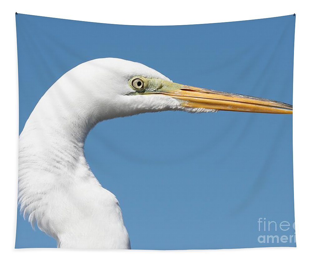 Egret Tapestry featuring the photograph Great Egret Profile Against Blue Sky by Carol Groenen