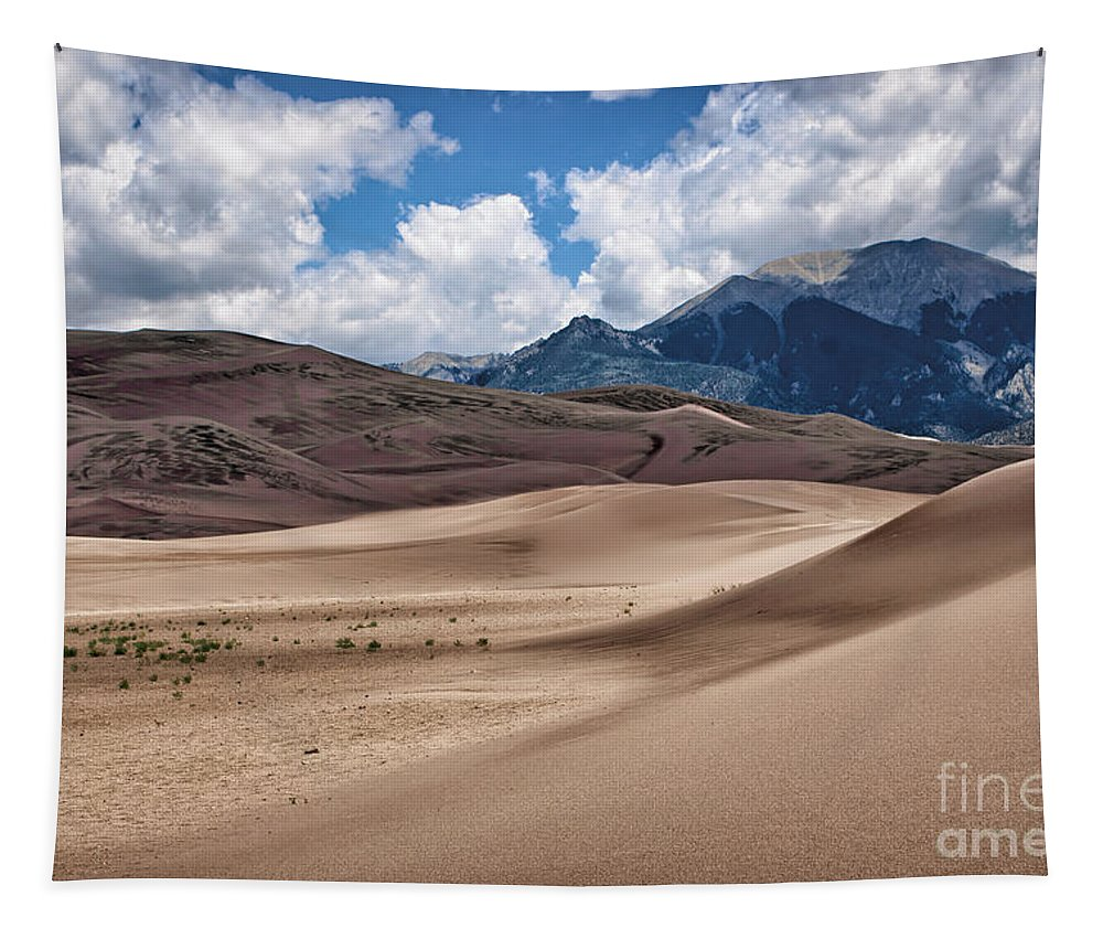 Sand Dunes Tapestry featuring the photograph Great Sand Dunes #6 by Nikolyn McDonald