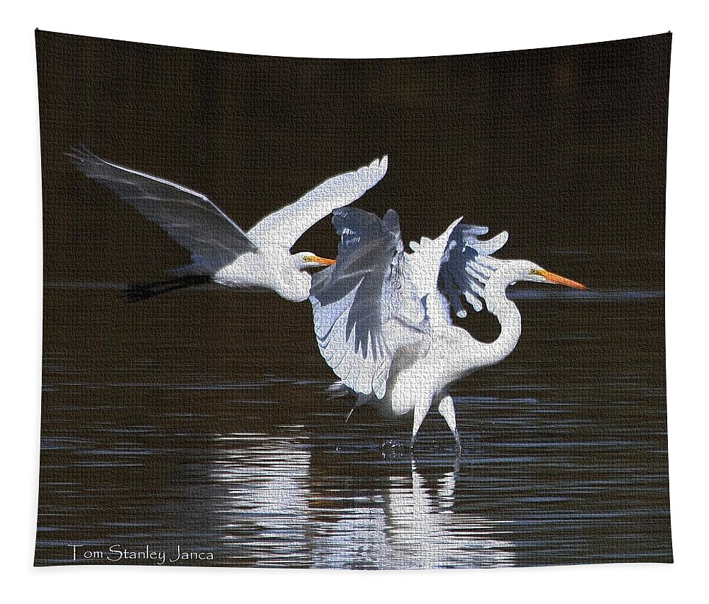 Greater Egrets Tapestry featuring the photograph Greater Egrets Meet Up by Tom Janca