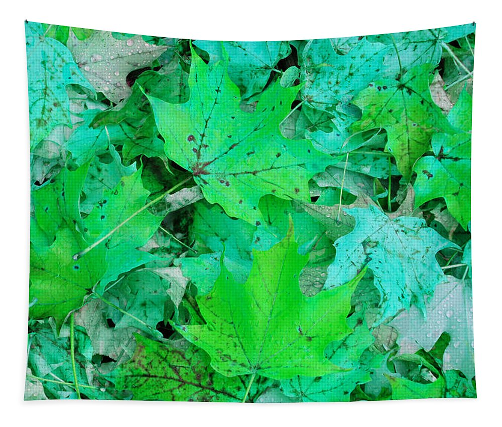 Leaves Tapestry featuring the photograph Green Leaves by Aimee L Maher ALM GALLERY