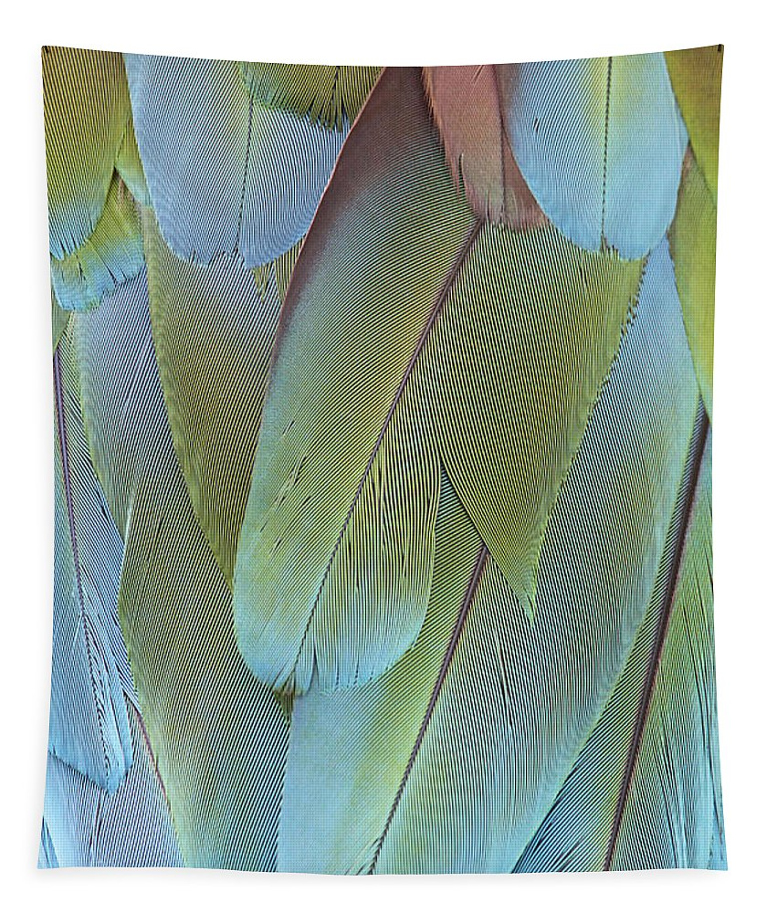 Green-winged Macaw Tapestry featuring the photograph Green-winged Macaw by Judy Whitton