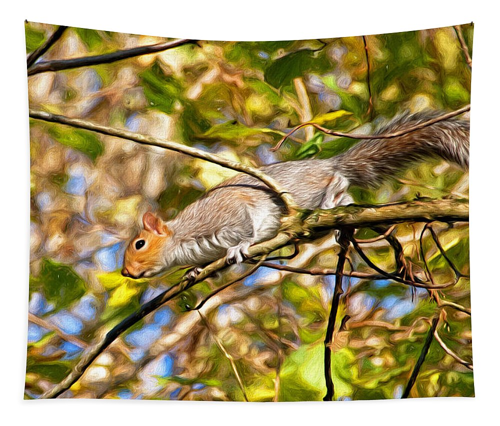 Squirrel Tapestry featuring the photograph Grey Squirrel - Impressions by Susie Peek