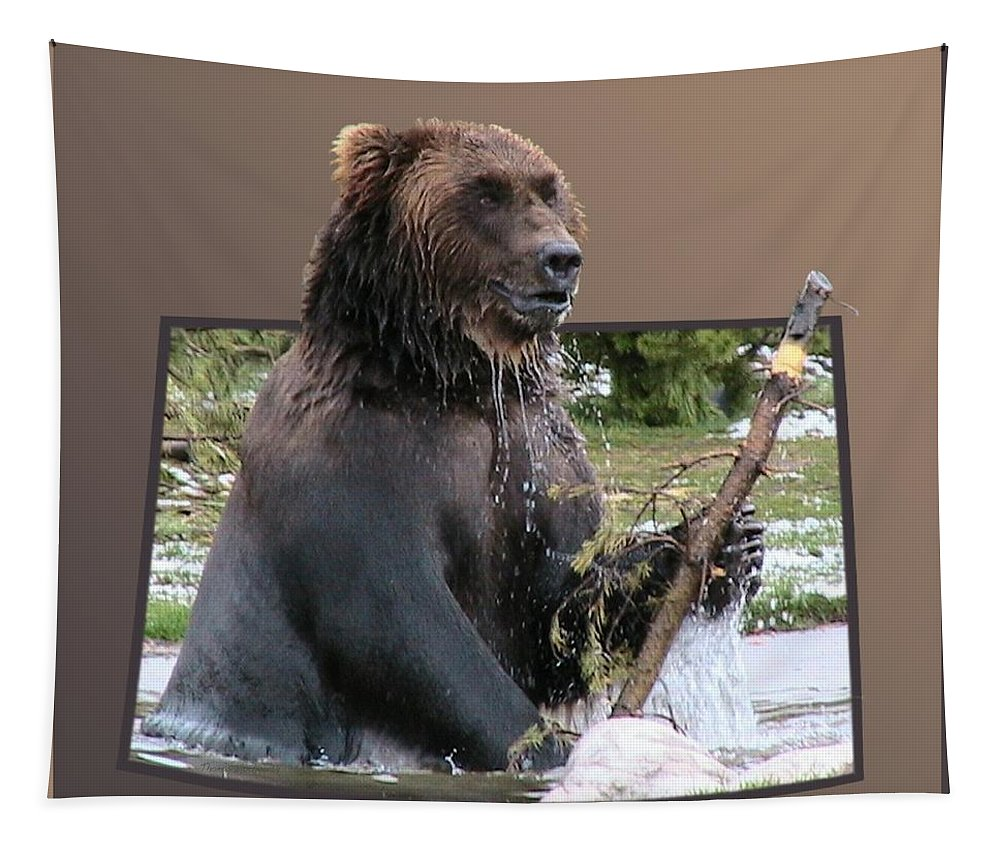 Animals Tapestry featuring the photograph Grizzly Bear 6 Out Of Bounds by Thomas Woolworth