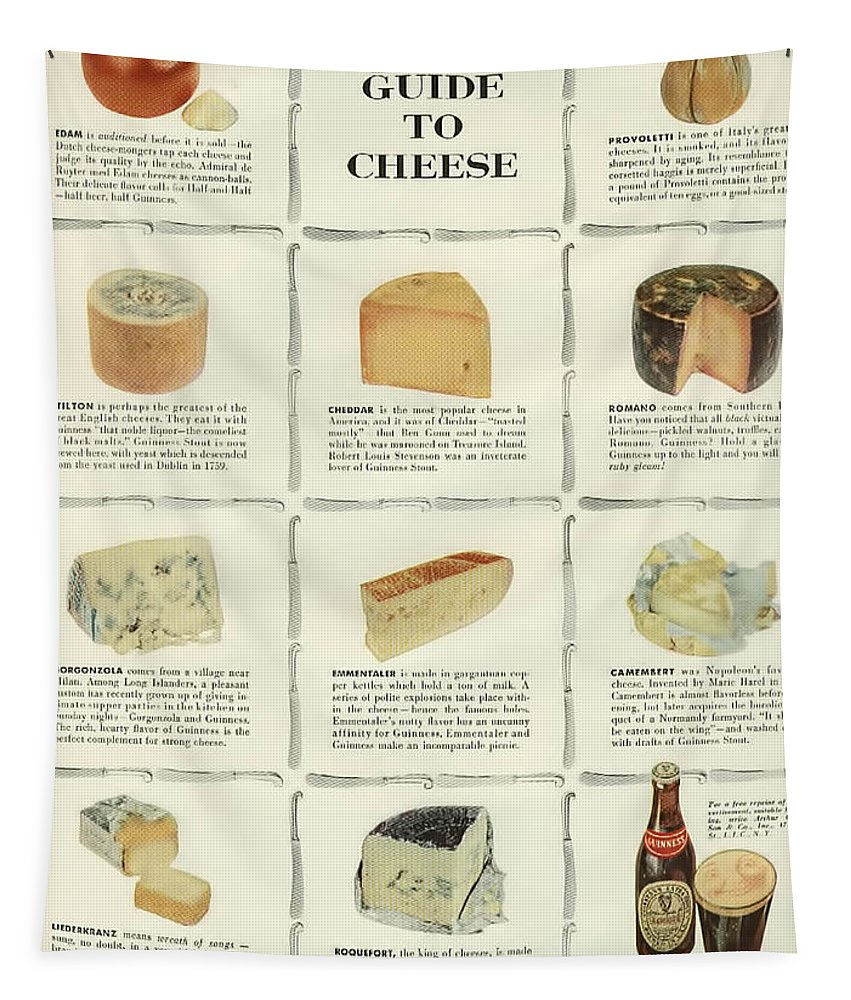 Guinness Guide To Cheese Tapestry featuring the digital art Guinness Guide to Cheese by Georgia Fowler