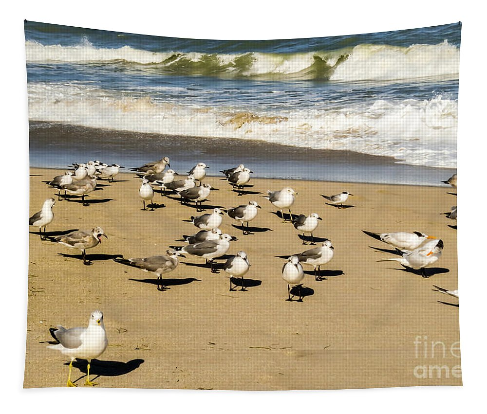 Gull Tapestry featuring the photograph Gulls At The Beach by Zina Stromberg