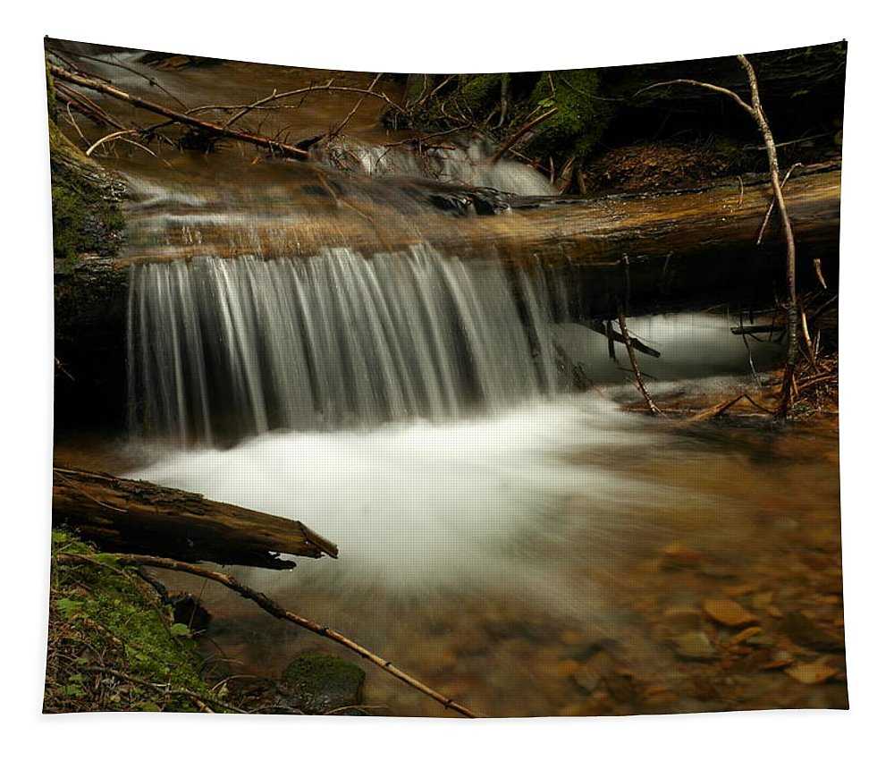 Water Tapestry featuring the photograph Gurgling Over A Small Log by Jeff Swan