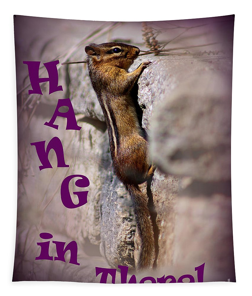 Cute Tapestry featuring the photograph Hang In There Chipmunk by Karen Adams