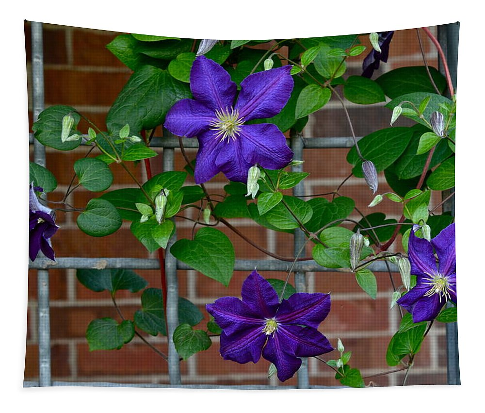 Vine Tapestry featuring the photograph Hanging Garden by Frozen in Time Fine Art Photography