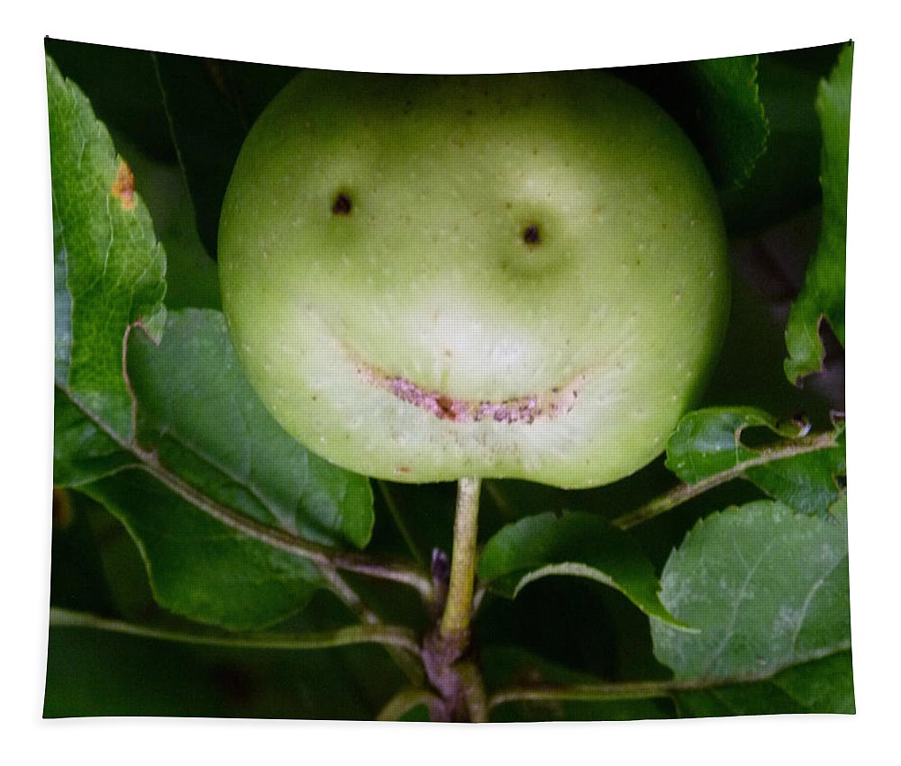 Apple Tapestry featuring the photograph Happy Apple by Richard Bryce and Family