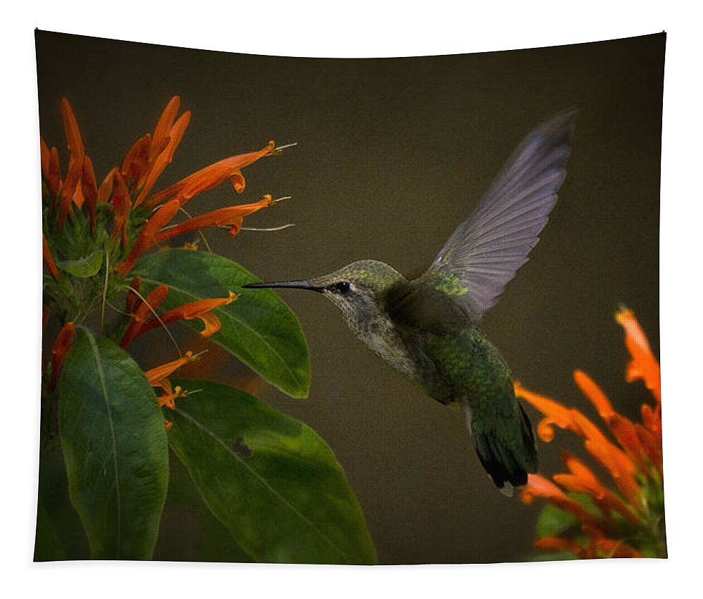 Hummingbird Tapestry featuring the photograph Happy Little Hummingbird by Saija Lehtonen