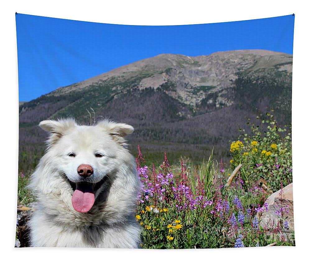 Samoyed Dog Tapestry featuring the photograph Happy Mountain Dog by Fiona Kennard