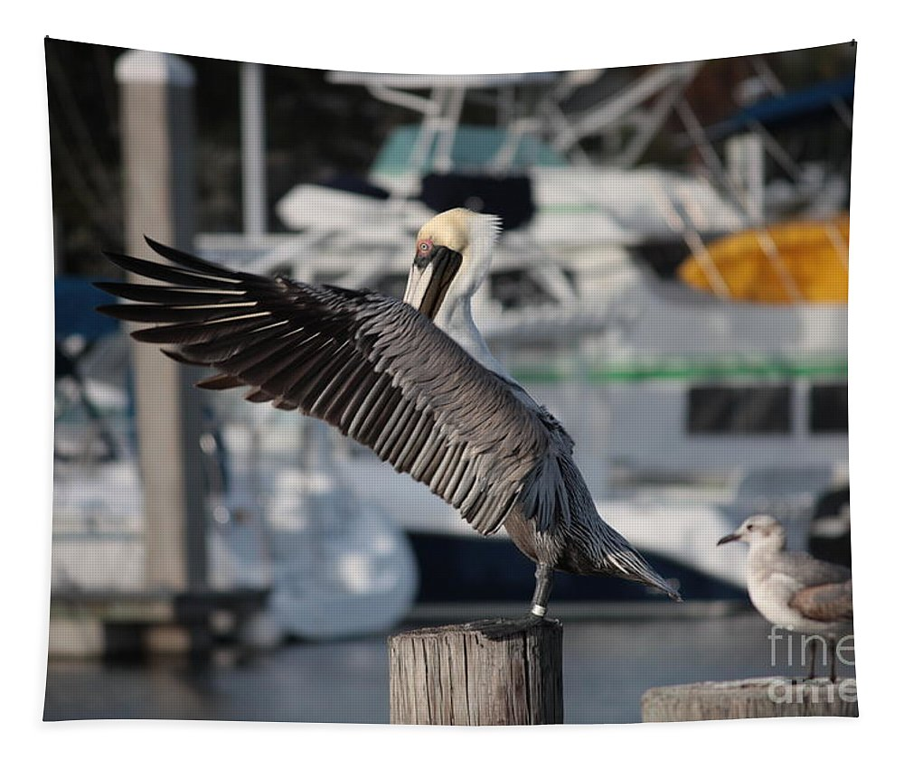 Birds Tapestry featuring the photograph Harbor Pelican And Gull by Carol Groenen