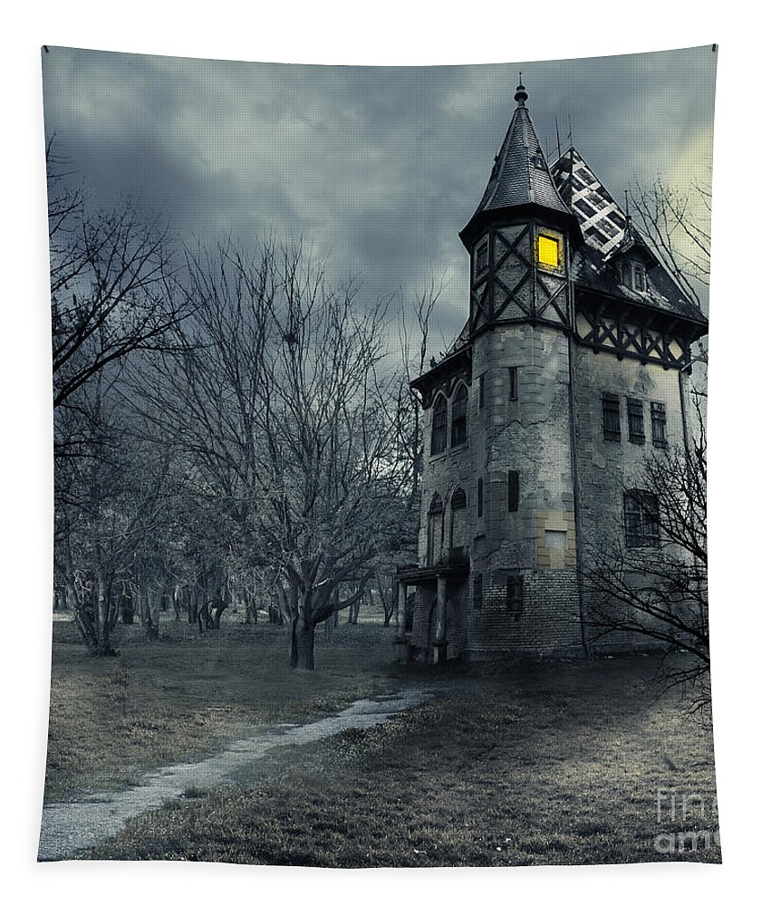 House Tapestry featuring the photograph Haunted House by Jelena Jovanovic