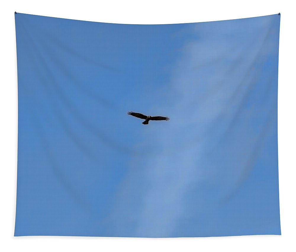 Brown Tapestry featuring the photograph #hawk #harrier #soaring High On Blue Sky #minimalism by Leif Sohlman