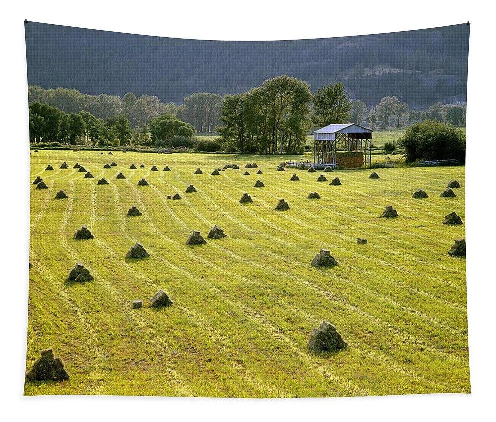 Hay Bales Tapestry featuring the photograph Hay Bales by Ed Cooper Photography