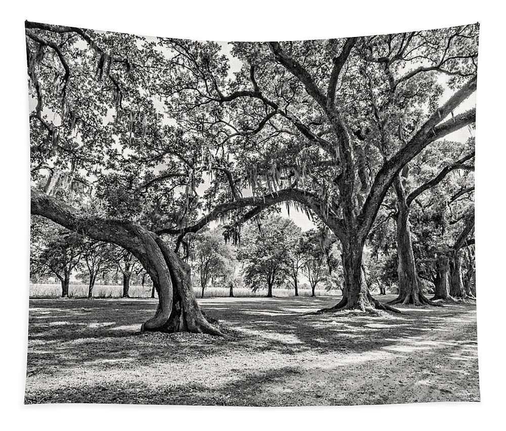 Nola Tapestry featuring the photograph Heading South Bw by Steve Harrington