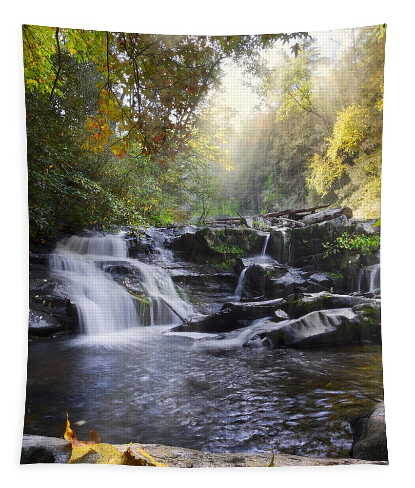 Appalachia Tapestry featuring the photograph Heaven's Light by Debra and Dave Vanderlaan