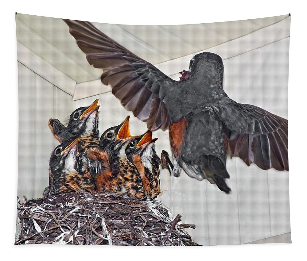 Bird Tapestry featuring the photograph Here Comes Mom by Steve Harrington