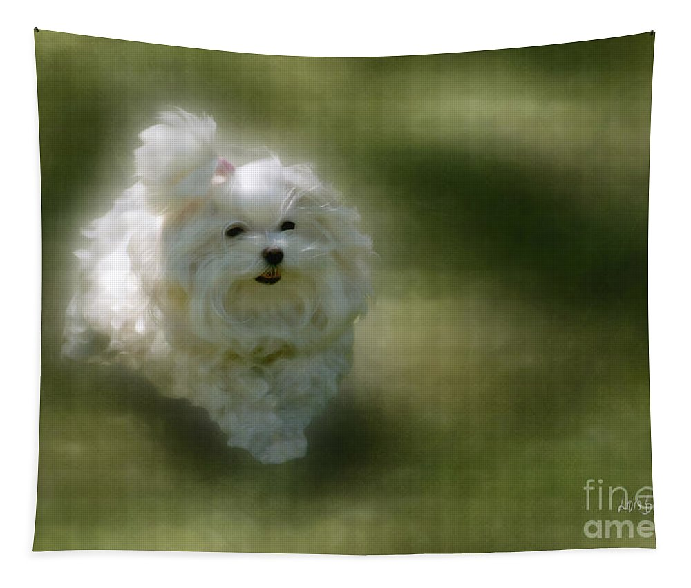 Dogs Tapestry featuring the photograph Here She Comes by Lois Bryan