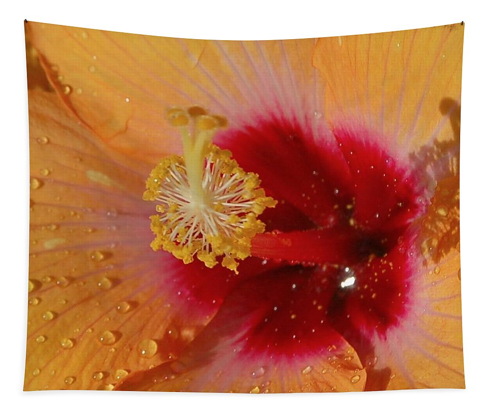 Linda Brody Tapestry featuring the photograph Hibiscus Stamen IIi by Linda Brody
