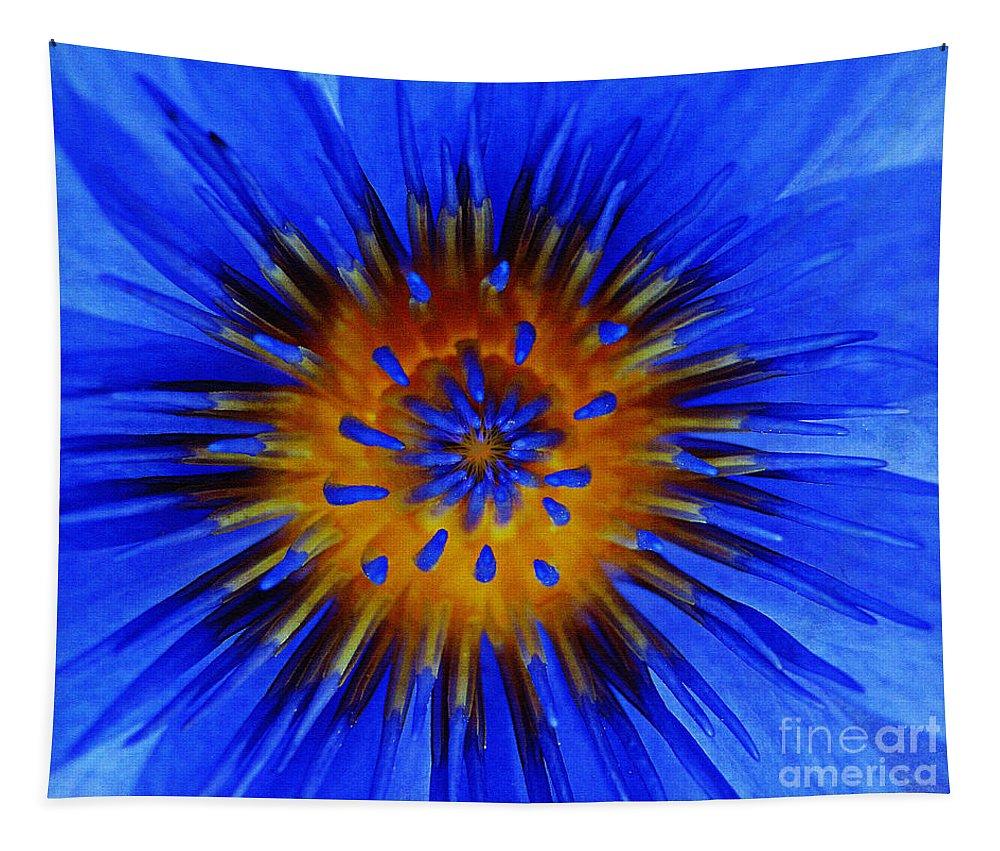 Flowers Tapestry featuring the photograph Hidden Sun by Ben Yassa