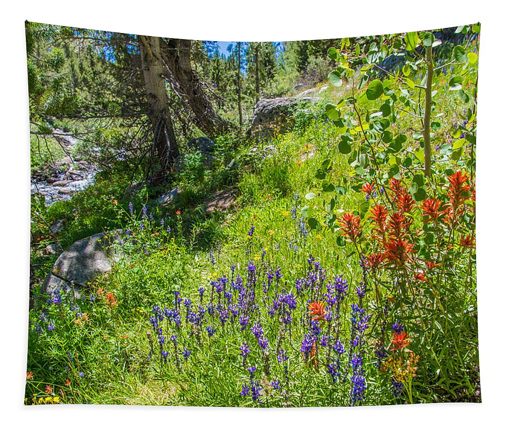 Sierra Tapestry featuring the photograph High Country Wildflowers by Lynn Bauer